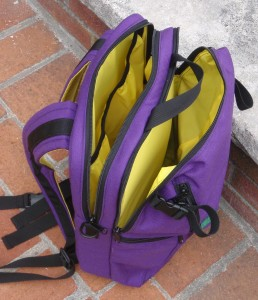 This is a gig bag in Eggplant with Yellow lining